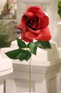 """FN10001RD Hybrid Tea Rose Spray (Nat Touch) Red 24""""   ***PREORDER FOR SPRING DELIVERY***"""